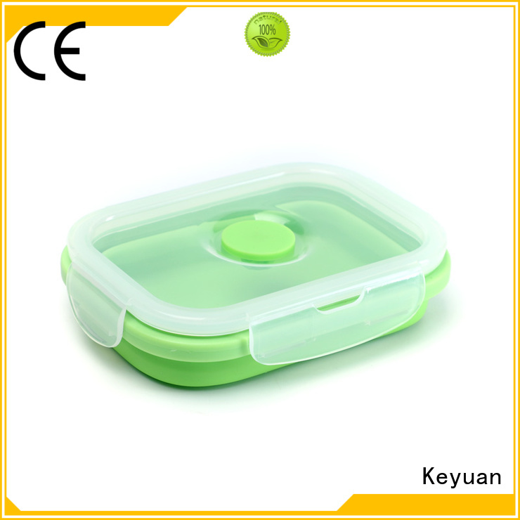 Keyuan Child Silicone Lunch Box 160*12*2 mm For food delivering
